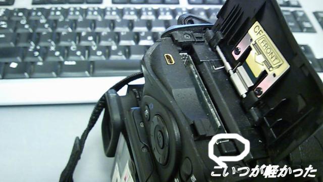 ☆DSC_0099.JPG